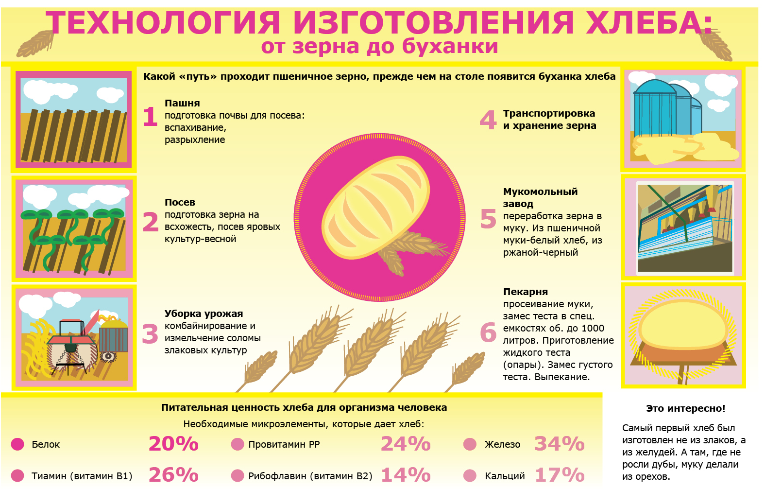 Технологический процесс схема производство хлеба