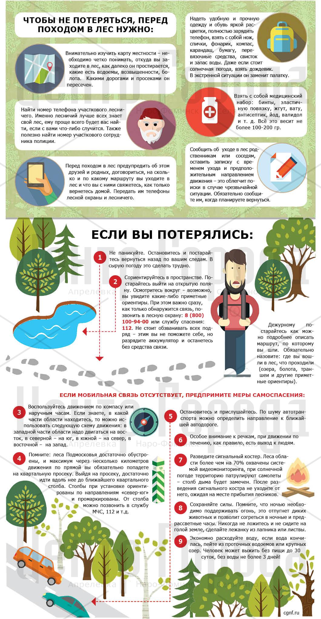 Что делать если ты заблудился в лесу фото